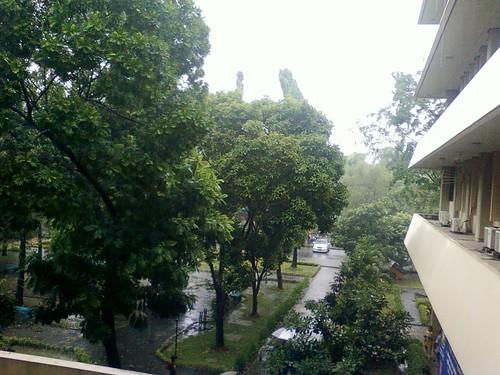 after raining @campus