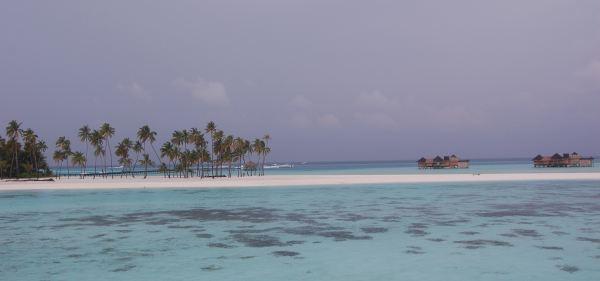 unbelievable-waters-beach-coconut-trees-water-villas-six-sense-resort