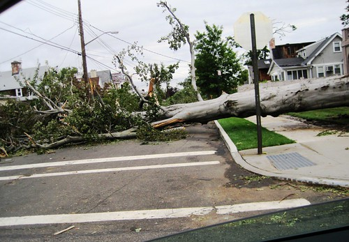 Tornado: Saturday Morning