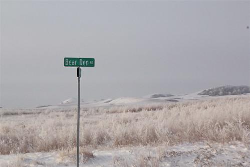 November 24, 2010. My street