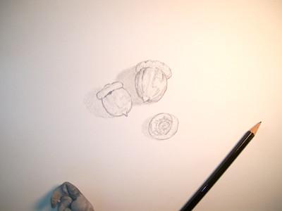 20100908_acorn1