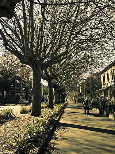 University of Auckland - Symonds Street
