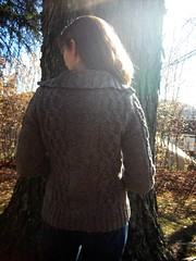 FO: (almost) a sweater for Rhinebeck