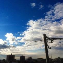 (^o^)ノ < おはよー!  いい朝だよ~!
