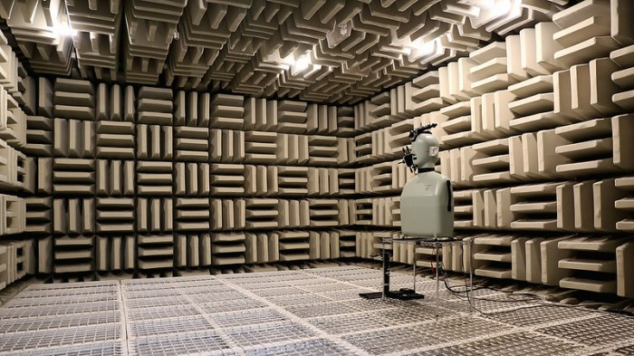 1_Showing the anechoic chamber with professional dummy tester
