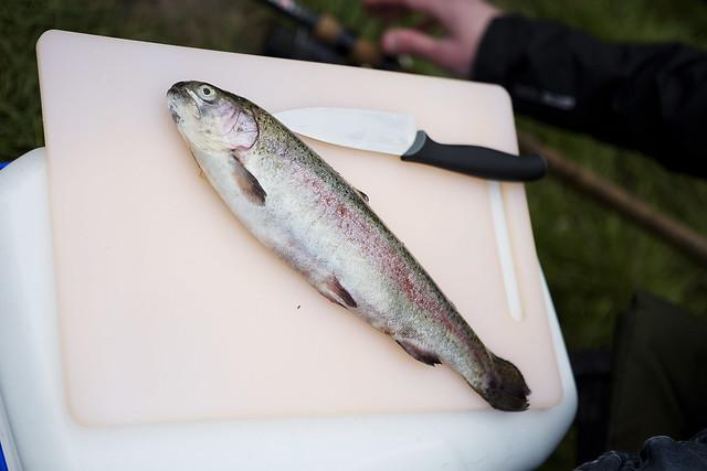 Fishing_36