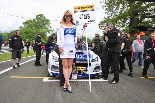Jason Plato on the grid before the first BTCC race at Oulton Park, May 2017
