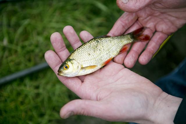 Fishing_70