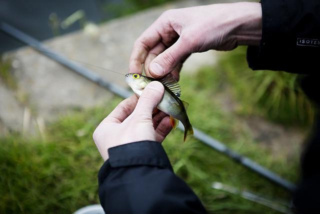 Fishing_13