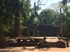 """Ta Prohm (""""Jungle Temple""""), Cambodia"""