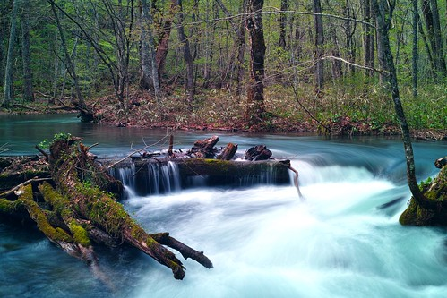 奥入瀬渓流 Oirase Keiryu mountain stream