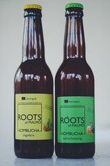 """Kombucha - Roots of Malmö • <a style=""""font-size:0.8em;"""" href=""""http://www.flickr.com/photos/15511507@N00/34588807401/"""" target=""""_blank"""">View on Flickr</a>"""