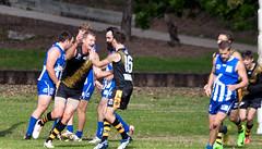 Troy Luff for Balmain Tigers V Norwest Sydney AFL May 2017 00010