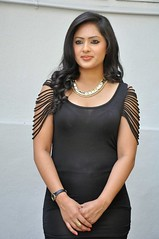 Indian Actress NIKESHA PATEL Hot Sexy Images Set-2  (91)