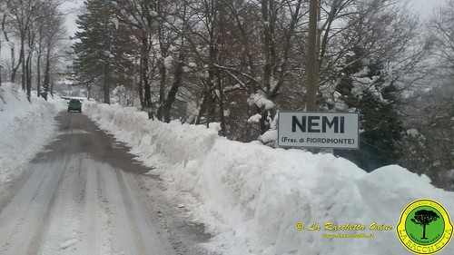 Terremoto Centro Italia 2017_086
