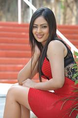 Indian Actress NIKESHA PATEL Hot Sexy Images Set-2  (37)