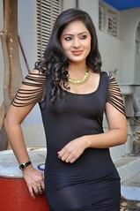 Indian Actress NIKESHA PATEL Hot Sexy Images Set-2  (72)