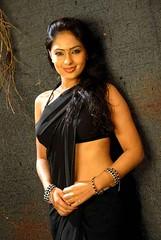 Indian Actress NIKESHA PATEL Hot Sexy Images Set-2  (44)