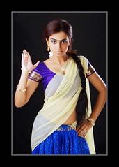Indian Actress DIMPLE CHOPADE Hot Photos-Set-1 (20)