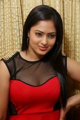 Indian Actress NIKESHA PATEL Hot Sexy Images Set-2  (26)