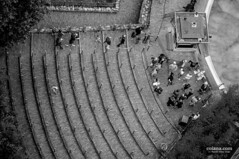 people in a row from above