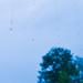midsummer rain