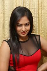Indian Actress NIKESHA PATEL Hot Sexy Images Set-2  (27)