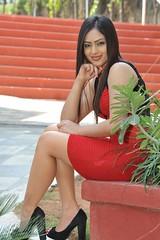 Indian Actress NIKESHA PATEL Hot Sexy Images Set-2  (38)