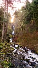 IMG_20150305_105442287-Wahkeena-Falls