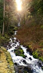 IMG_20150305_105520195-Wahkeena-Falls