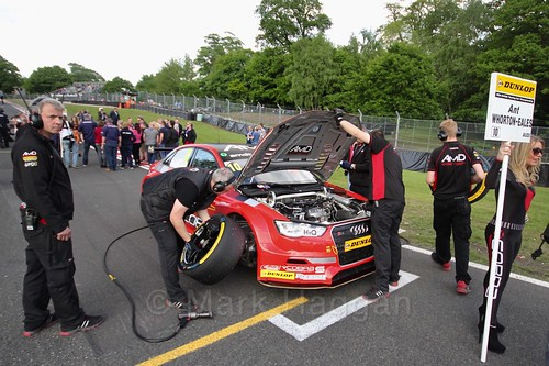 Ant Whorton-Eales on the grid at Oulton Park, May 2017
