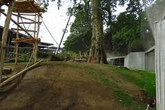 300 - 2017 06 10 - In het gorillaverblijf in aanbouw