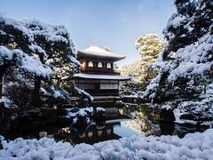 銀閣寺 Ginkakuji temple snow