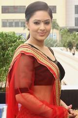 Indian Actress NIKESHA PATEL Hot Sexy Images Set-2  (51)