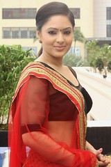 Indian Actress NIKESHA PATEL Hot Sexy Images Set-2  (51)