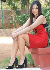 Indian Actress NIKESHA PATEL Hot Sexy Images Set-1 (26)