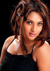 Indian Actress Ramya Hot Sexy Images Set-2  (24)