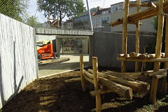 292 - 2017 06 10 - In het gorillaverblijf in aanbouw