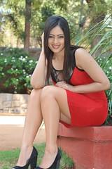Indian Actress NIKESHA PATEL Hot Sexy Images Set-2  (39)