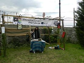 20120108_primo_mercatino_gas_magnolia-16