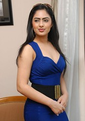 Indian Actress NIKESHA PATEL Hot Sexy Images Set-1 (39)