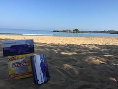 beachcleanup1