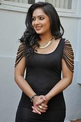 Indian Actress NIKESHA PATEL Hot Sexy Images Set-2  (94)