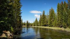 Henry's Fork of the Snake River - Idaho
