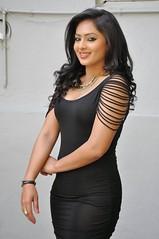 Indian Actress NIKESHA PATEL Hot Sexy Images Set-2  (84)