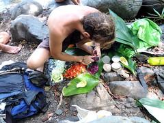 Panama Jungle (47)