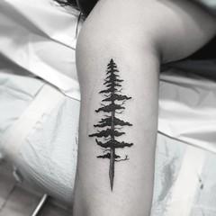 🌲🌲🌲 #tattoo #treetattoo #chicoca #cityoftrees #cityoftreestattoo #eyeofjade #girlswithtattoos #inked
