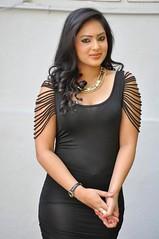 Indian Actress NIKESHA PATEL Hot Sexy Images Set-2  (79)