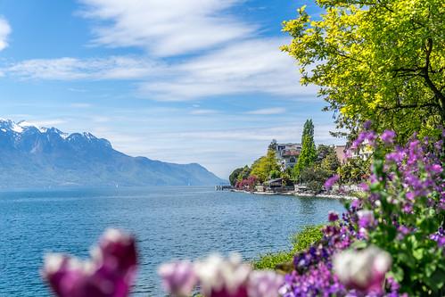 Suisse-01763