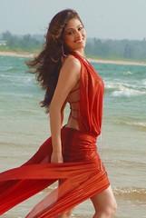 Indian Actress SADA Photos Set-2 (23)